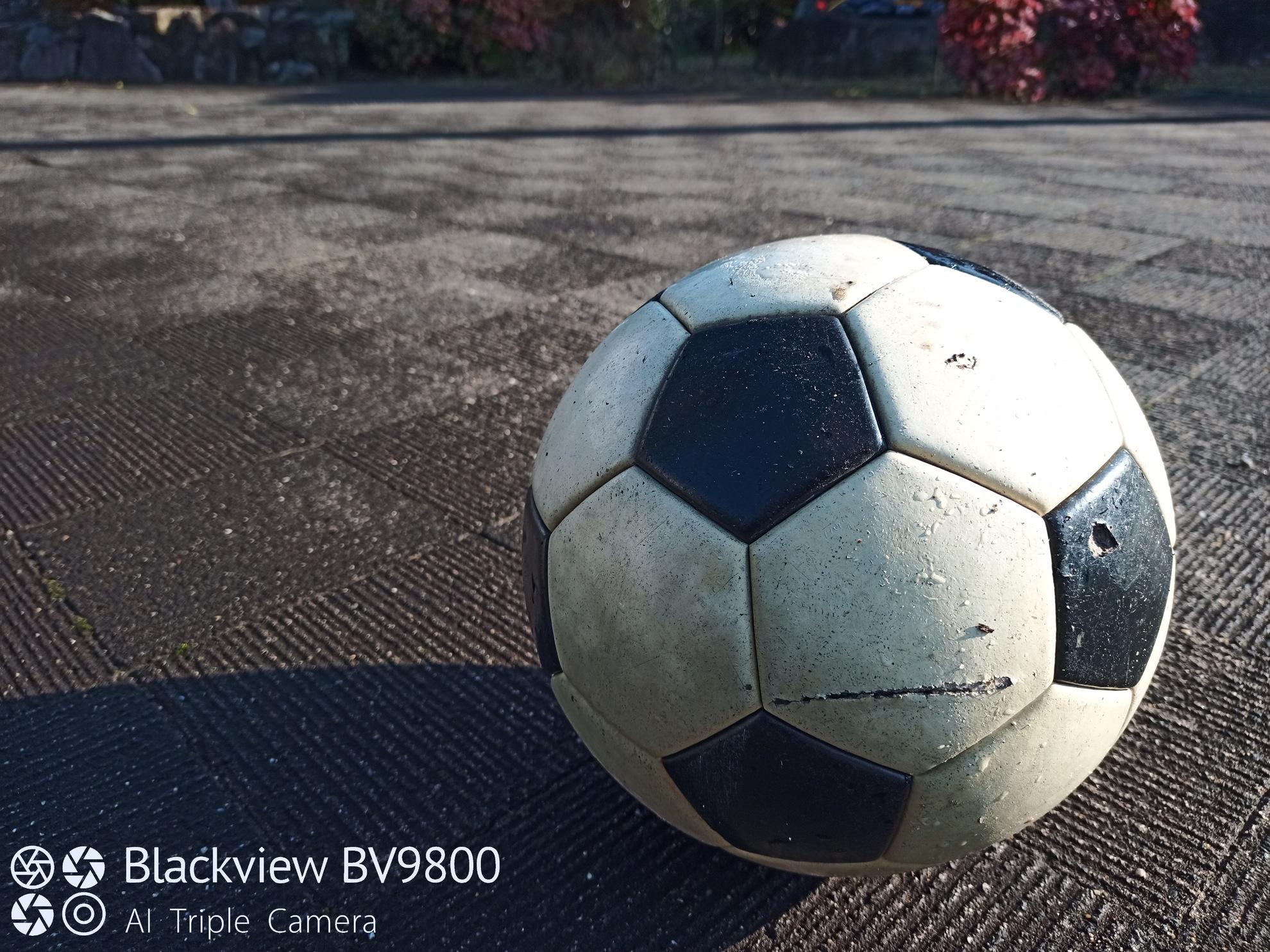 BV9800撮影カメラサンプル ぼかし